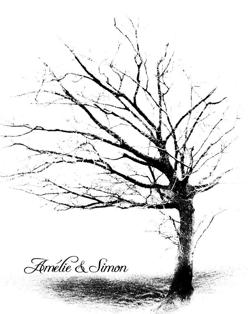 CNKa--808x1024 Autour du mariage 2: L'arbre à empreintes Peinture Photographie